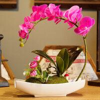 蝴蝶兰仿真花手感真花客厅摆设塑料假花盆栽摆件花艺绢花 船型蝴蝶兰紫色