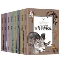 西顿动物记野生动物故事集小说全集共8册小学生版 动物故事小说三四五六年级少儿课外书阅读经典必读儿童文
