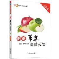 图说苹果高效栽培(全彩版) 高登涛 9787111592068