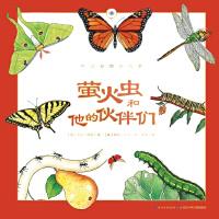 听大自然讲故事:萤火虫和他的伙伴们