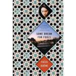 【新书店正版】 Some Dream for Fools Faiza Guene Mariner Books 9780