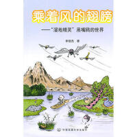 【二手旧书9成新】 乘着风的翅膀:湿地精灵――黑嘴鸥的世界宋晓杰中国环境出版社