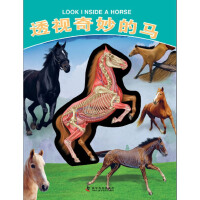 有趣的透视立体书--有趣的透视立体书―透视奇妙的马
