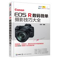 Canon EOS R微单摄影技巧大全 佳能EOS R单反相机摄影教程书籍 相机使用详解说明书 实拍技巧 镜头闪光灯从