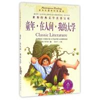 童年在人间我的大学/青少年课外经典阅读/世界经典文学名著宝库