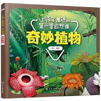 让孩子着迷的第一堂自然课――奇妙植物