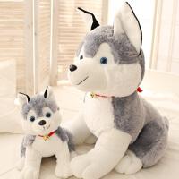 哈士奇毛绒玩具 狗狗公仔抱枕枕头 可爱布娃娃坐款狗玩偶女生礼物 灰色