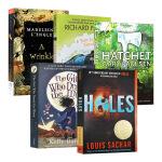 纽伯瑞获奖小说书单6本 英文原版 Newbery 手斧男孩 别有洞天 蓝色的海豚岛 时间的皱折 青少年小说文学奖 英文