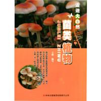 【新书店正版】菌类植物(走进大自然) 王艳写 吉林出版集团有限责任公司 9787553416038