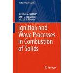 【预订】Ignition and Wave Processes in Combustion of Solids 978