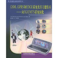 GSM、GPRS和EDGE系统及其关键技术:向3G/UMTS系统演化 [西]哈尔农,[西]罗梅罗,[西]梅尔罗,彭木根
