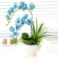 仿真花蝴蝶兰花插套装绢花装饰花盆栽家居客厅花瓶花艺套装