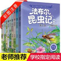 法布尔昆虫记(盒装全集正版10册)绘本少儿童读物 3-5-6-7-8-9-10-11-12-15岁小学生课外阅读书籍
