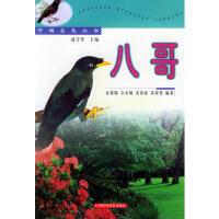 八哥――中国名鸟丛书 袁慕陶 9787532357178 上海科学技术出版社