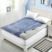 榻榻米床垫套保护套夏天床笠薄垫乳胶床垫套全包可拆卸拉链