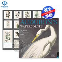 现货 奥杜邦美国鸟类 水彩画 美洲的鸟 2020年画集挂历日历 英文原版 Audubon's Watercolors 2
