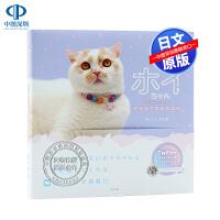 现货【深图日文】ホイちゃん hoippu cream PHOTOBOOK 猫咪摄影集 人气猫 网红喵星人 ホイ主、 玄光