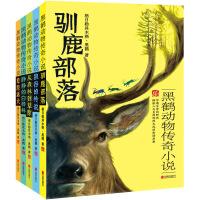 黑鹤动物传奇小说 全5册驯鹿部落+从森林到草原+静静的白桦林+草原猛犬+狼谷的传说 8-12岁儿童文学阅读小学生课外推