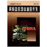 碳酸盐岩潜山油田开发 中国油田开发丛书