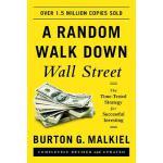 英文原版 A Random Walk Down Wall Street: The Time-Tested Strate