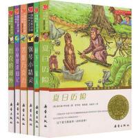 国际大奖小说6册 桥下一家人 塔克的郊外 小巫婆求仙记 苦涩巧克力 钢琴小精灵 夏日历险 青少年儿童成长励志文学小说童
