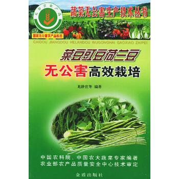 《豇豆菜豆荷兰豆无公害高效v豇豆--蔬菜无公害看图猜物一根火腿肠图片