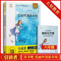 正版 2020春 爱丽丝漫游奇景 金牛耳引读者 江苏凤凰文艺出版社