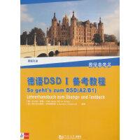 德语DSD I备考教程:教学参考书