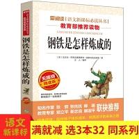 钢铁是怎样炼成的语文新课标必读丛书 经典世界名著系列小学生课外阅读物书籍8-9-10-12-15岁小学三四五六年级课外