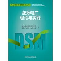 电力需求侧管理系列丛书 能效电厂理论与实践