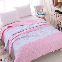 ???宿舍韩式丝绵夏被纯棉空调被盖毯时尚超柔夏季