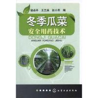 冬季瓜菜安全用药技术【正版图书 下单立减 可开发票】