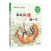 沈石溪画本・注音书系列(第一辑)―― 再被狐狸骗一次