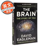 大脑解密手册 英文原版 The Brain: The Story of You 进口图书 David Eagleman