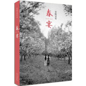 春宴(安妮宝贝作品)