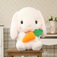 ?韩国可爱垂耳兔毛绒玩具兔子娃娃公仔公主睡觉玩偶生日礼物送女友