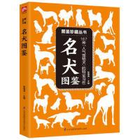 """名犬图鉴 :167种""""人气宠物犬""""的特征与习性"""