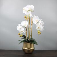 现代新中式摆件样板房餐厅客厅玄关仿真蝴蝶兰花艺卉花器软装饰品