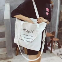 布包女单肩包韩国文艺百搭布袋包chic帆布包斜跨大容量学生手提包