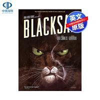 英文原版 黑猫侦探 Blacksad 法国漫画大师 Juanjo Guarnido 精装 神秘绘本小说