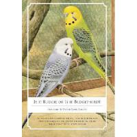 【�A�】Is It Budgie or Is It Budget-Bird?