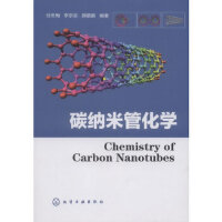 碳纳米管化学 任冬梅,李宗圣,郝鹏鹏 化学工业出版社 9787122156785