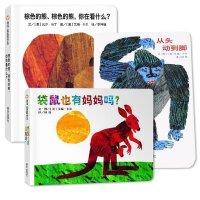 【信谊】宝宝起步走全套3册 从头动到脚 棕色的熊棕色的熊你在看什么 袋鼠也有妈妈吗 学前认知儿童书 亲子互动儿童启蒙早
