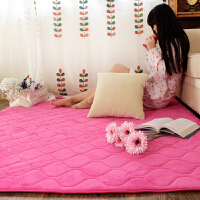 乐唯仕绗缝珊瑚绒地毯欧式地毯卧室客厅茶几办公地毯地垫门垫脚垫现代简约榻榻米地毯飘窗垫床边毯