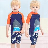 儿童泳衣套装男童泳裤学生中大童分体温泉防晒游泳速干泡温泉泳衣