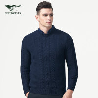 七匹狼毛衫秋季青年男士羊毛混纺圆领厚毛衫时尚商务休闲毛衣