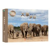 大象罗拉(王珞丹、李宇春、王石、史航、张越、小柯倾情推荐,附赠DVD光盘,罗拉给你讲述一个爱与自由的故事)
