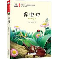 昆虫记 注音版儿童文学名家精选书系 小学生语文新课标必读丛书 一二三年级小学生课外阅读书籍 6-8-10-12岁儿童文学书籍名著