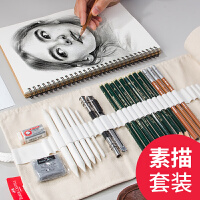 德国辉柏嘉素描铅笔套装2h-8b学生用绘画美术用品画画初学者素描笔套装专业绘画工具画笔套装成人炭笔绘画笔