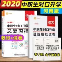 河南省中职生对口升学考试总复习语文 总复习指导+语文模拟试卷 中职对口升学2020 中专生对口升学高考 高考单招语文教
